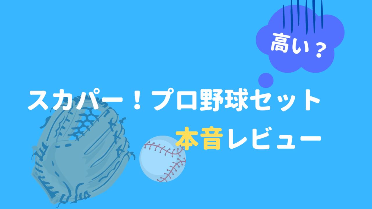 スカパープロ野球セット本音レビュー